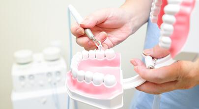 天然歯をなるべく削らず麻酔なしでむし歯の治療をしていきます。